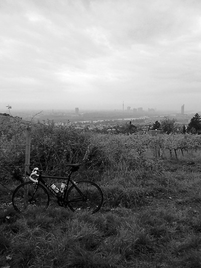 Pictures we like! Nice view on Vienna (Kahlenberg). [be]