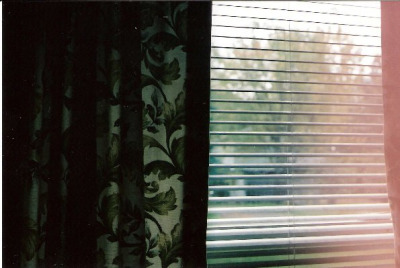 satansbaby:  new curtains by hannuuuuh on Flickr.