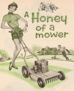theniftyfifties:  A 1954 Worcester Lawnmower advertisement.
