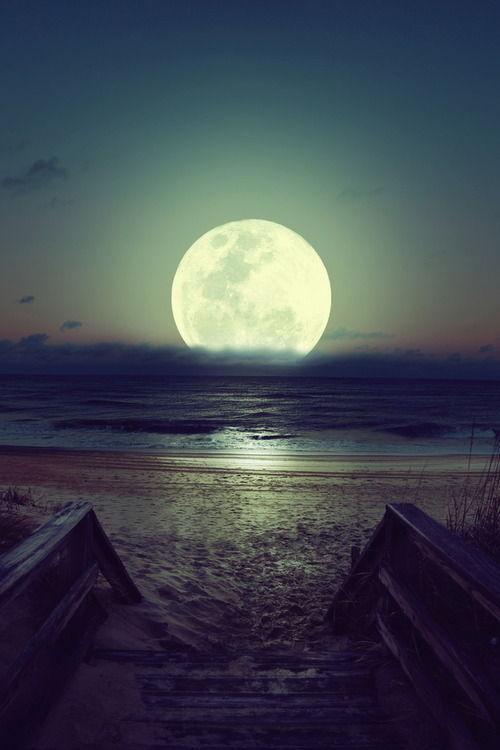 Beaches At Night Tumblr