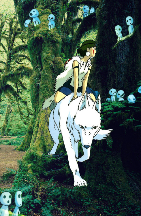 * The Princess Mononoke