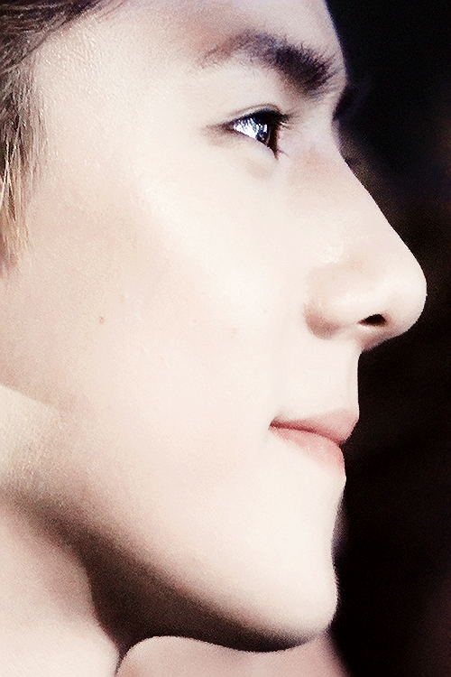 Oh Sehun's Side Profile of Perfection.
