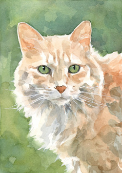 studiotuesday:  Cat watercolor - dswatercolors.com