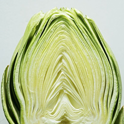 We Heart Artichokes! Daily Bite: We love this fiber-rich green globe for its versatility. Get three of our favorite vegetarian artichoke recipes here!