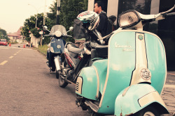 frozenite:  Vespa
