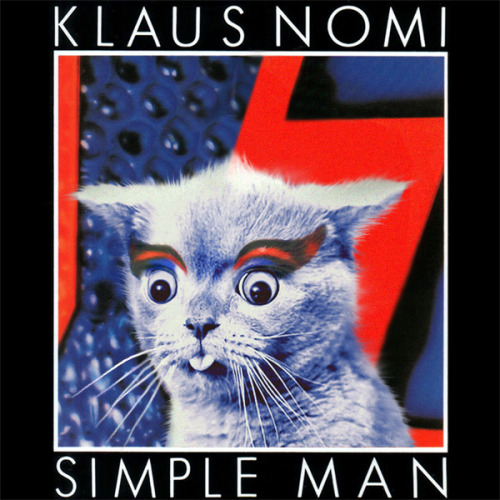 thekittencovers:  Klaus Meowmi - Simple Cat