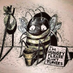 Save the bees plant flowers, or we are all going to die.