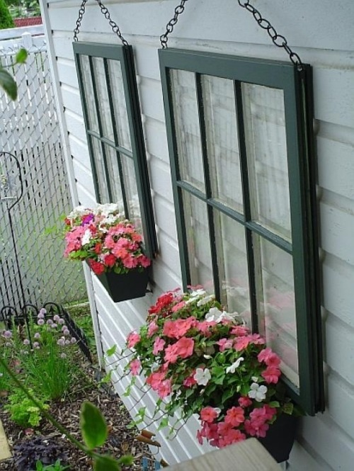 flowersgardenlove:  Old Paned Window pla Flowers Garden Love