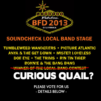 "We have a chance to play BFD 2013.  Please go vote for us!CLICK HERE TO VOTE.  I could give you all the reasons you should, but seriously look at us. We're adorable. Like kittens, when they're super young and their eyes are permanently wide as if to soak in every ounce of the world so they can grow into adult cats that rarely have their eyes open and are bored by the concept of existence.   Ok, so that simile took a few turns in the wrong direction.  You get the point.  This is a pretty huge music festival, we were selected to potentially be a part of it and we really want it.   Help? Reblog, share on FB, vote every day, bribe family, etc.   HERE - we'll sweeten the deal.  Watch our latest upload on Youtube:(Space)Teambuilding With the Quails!"" Then tell me you don't want to vote for us."