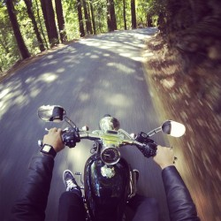 Love Love Love long motorbike rides through the redwoods with my @rebeccahurley  #motorcycle #harley #sportster #california #santacruz #motorbikemonday (at santa cruz mountains)