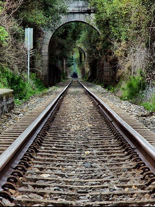 bluepueblo:  Train Tunnel, Galicia, Spain photo via debbie