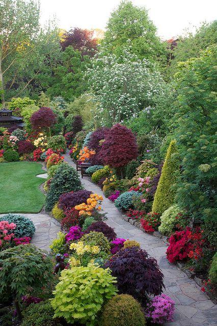 flowersgardenlove:  Late Spring Backyard Beautiful gorgeous pretty flowers