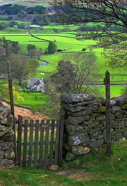 Green, Mersey River Valley, England photo via diane