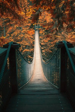 uploads landscape nature bridge British Columbia WATSF