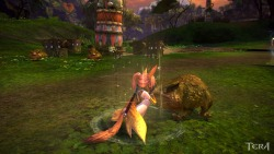 "kittieshade:  YO! So I enter this in the Tera Contest Valentines screen shot contest. AND ….. …. …. … … … … … I am now crown one of the winners. SO EXCITED. Got the email about it and first line stated, ""Congratz on Winning…"" had to read it about 5 times. Started jumping up and down. First Off I curled my hair and it stayed for once. I got my favourite pizza and my man, and we watched inkheart. Then reading that email. BEST VALENTINES DAY EVER. And for you people out that thinking I shouldn't of won and thinking it's too simple. Or that I'm coping the loading screen on the japanese server, same location, same pose and whatever. I honestly didn't know, because I'm not playing on the Japanese server. And clearly as of what I know, this is the only place that has frogs. And the FROG PRINCE is a story everyone knows, so… yeah… Congratz to my fellow Tera winners and thank you for people who did like my screenshot! Thank you for putting a smile on my face.  Congratz.  Nice pic"