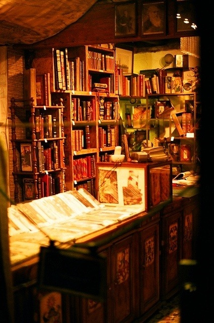 "bluepueblo:    Shakespeare and Company Bookstore, Paris photo via carnegie    Okay- the reading list is growing, the to-do list is growing…getting some great practice at being adaptable. I remember sitting down with Jim Maronek for a coffee and chat about Door Shakespeare back in October. This man is a treasure trove of ideas, questions, guidance, and authenticity. As we were brainstorming and throwing out ideas and words that we thought fit best for upcoming seasons and this new feel we are all building for Door Shakespeare- the following came up:                                    Nimble, Lean, Amazing, Fresh… Other favorites on the list are wood chips, stardust, elemental, humble, bold…I love the list we are building. But mostly, these first four words are sticking as words to live and work by. It is actually critical that we be adaptable, nimble, light, and fresh…in the way we work, in the stories we tell, and in the ""product"" we create… Working on this in my life too- lightness, adaptability, and a set of fresh, open eyes on each situation. Almost February…"