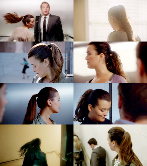 ziva david ponytail appreciation