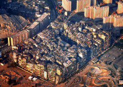 best-likes:  Did you know about Kowloon, a walled city with no government? These pics are nuts! http://longurl.it/1EZSS
