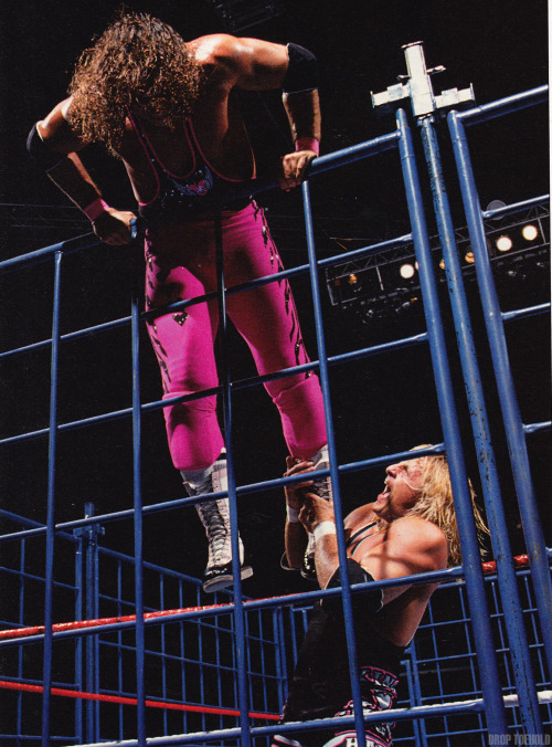 Bret Hart vs Owen Hart - WWF SummerSlam [8/29/1994] This match will always have a place in my personal top-five bouts of all time due specifically for it being the first wrestling card I was exposed to. As a kid living out in the country, weekly WWF viewings were an impossibility, making the local video rental store my only outlet to see guys like Sting, Bret Hart, and Hulk Hogan. I was aware of these characters already through video games, but it wasn't until I saw the WWF SummerSlam 1994 VHS tape until I took my first step into this world for real real. The best thing is that even though Bret and Owen ended up being the best match on the tape and one the greatest matches in both mens' careers, the real reason I rented it was because of the infamously awful main event, The Undertaker vs The Undertaker!