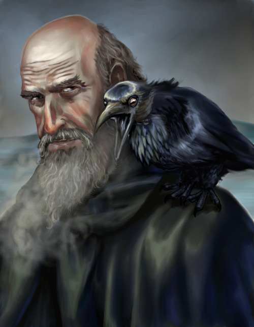 wicgeeks:  Commander Mormont and his raven by VVjonez