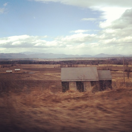 Some abandoned & dilapidated farmhouses on our drive home from Vermont. They're a bit blurry because I took them through the window of a moving car, but you get the idea!