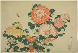 Chrysanthemums and Bee, by Katsushika Hokusai, 1833.