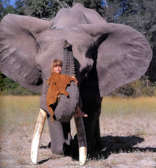 ashleymater:  Tippi Benjamine Okanti Degré, daughter of French wildlife photographers Alain Degré and Sylvie Robert, was born in Namibia. During her childhood she befriended many wild animals, including a 28-year old elephant called Abu and a leopard nicknamed J&B. She was embraced by the Bushmen and the Himba tribespeople of the Kalahari, who taught her how to survive on roots and berries, as well as how to speak their language. Learn more  If only I can do this.