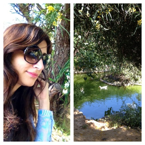 Warm salam from the ducks and me :) www.meandbeirut.com At the beautiful Sioufi Garden #beirut #lebanon