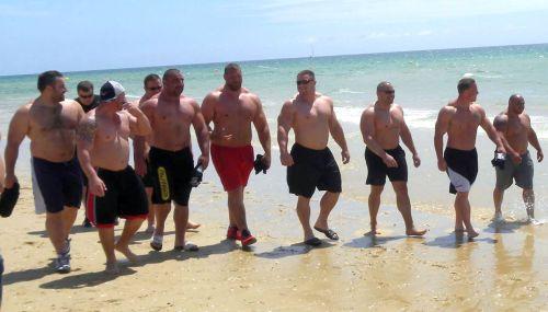 Beach Bulls