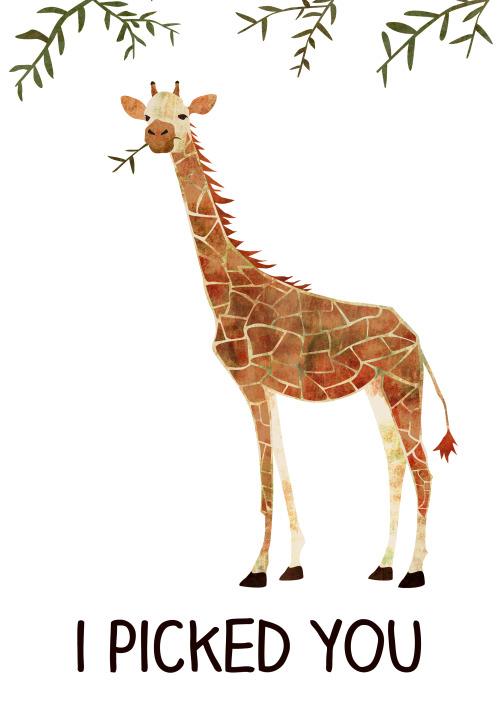 Giraffe Quotes Tumblr