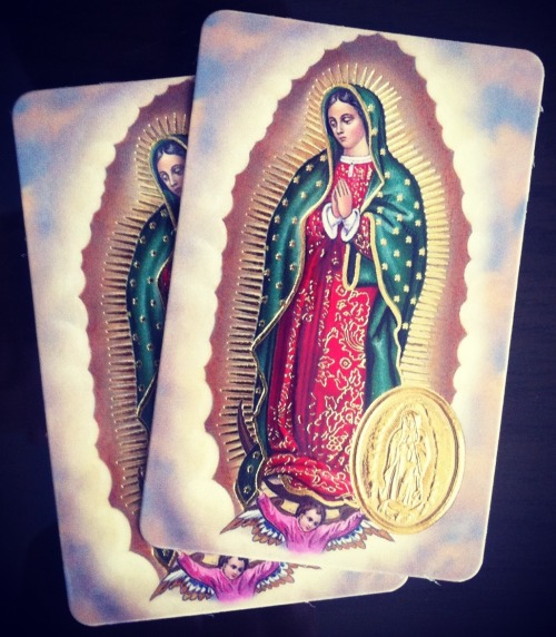 Two holy cards of Our Lady of Guadalupe which I brought from Rome for a Persian friend. Even though she is not a Christian she has spread the Guadalupan devotion among her relatives in Europe and Iran, as she feels the effigy of Mary has brought her many blessings.