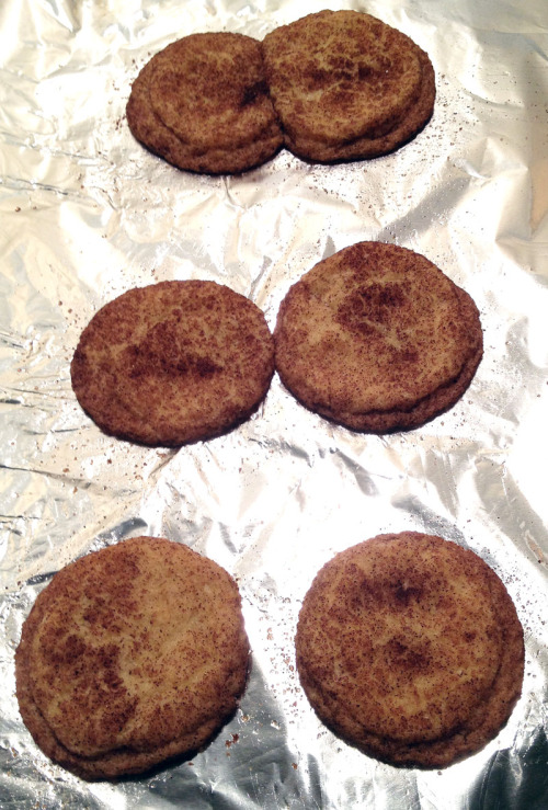 Snickerdoodle division! My first thought when I saw the pan: mitosis!