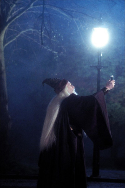 THE Dumbledore