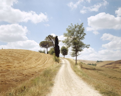 Joel Meyerowitz, The White Road, Tuscany 2002