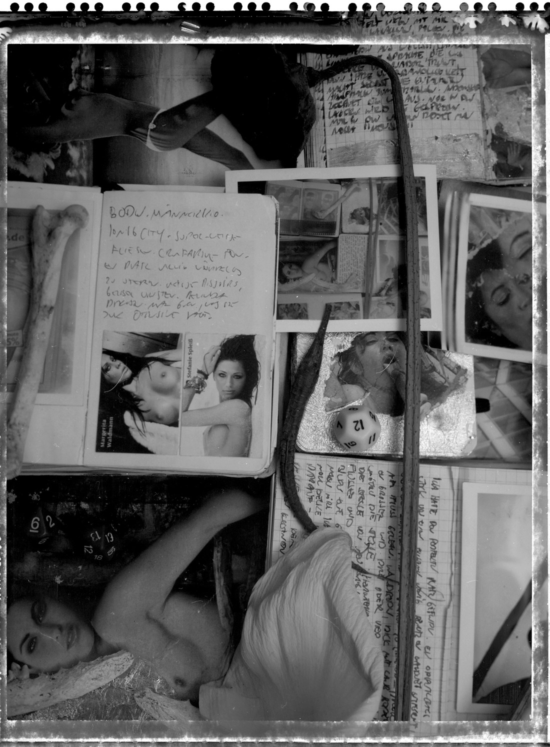 diaries (closer) (next series will be diary pages with flowers…promised…) Camera: Arca, Film: Polaroid 55, scanned negative
