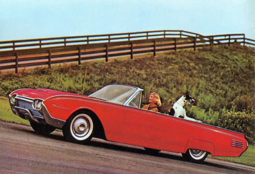 1961 Ford Thunderbird Convertible by coconv on Flickr.1961 Ford Thunderbird Convertible