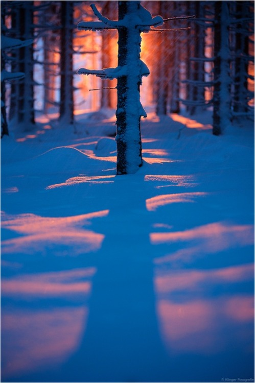 Winter Sunset, Bavaria, Germany photo via margaret