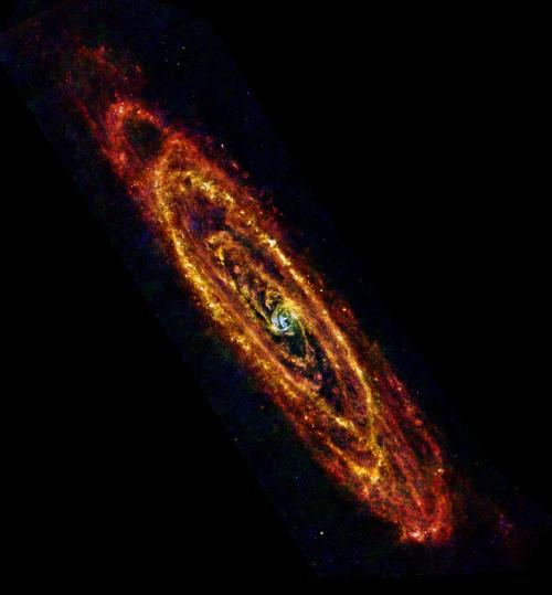 (via APOD: 2013 February 2 - Herschel's Andromeda) Image Credit: ESA/Herschel/PACS & SPIRE Consortium, O. Krause, HSC, H. Linz Herschel Space Observatory is the ESA's amazing infrared telescope. Like NASA's Spitzer Space Telescope, it is capable of seeing cooler (literally, as in lower temperatures) things in the universe. In this case, the dust lanes of our Local Group partner, M31, the Andromeda Galaxy. The redder material in the outskirts is quite cool, barely warmed above absolute zero by the sparse numbers of stars, while the blues in the center show hot dust energized by the crowd of stars in the core of the galaxy. The dust itself can be used to trace molecular gas as well (both are usually found together in cool clouds) and show how much star formation is possible in Andromeda. These clouds of gas and dust tend to get shocked by supernovae or passing stars and start condensing and collapsing to form new generations of stars.