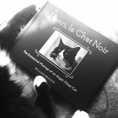 Book Review: Henri, le Chat Noir: The Existential Musings of an Angst-Filled Cat
