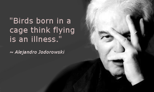 "asparkofconsciousness:  ""Birds born in a cage think flying is an illness."""