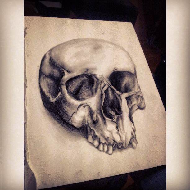 #skull #charcoal #drawing #art