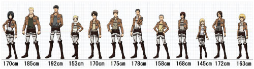 cool-infinitymanganime-blr:  a height all character Shingeki no Kyojin