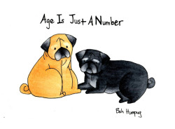 Senior pugs know that age is just a number. So here's some love to all the senior pugs out there! (via Bah Humpug: Age Is Just A Number)