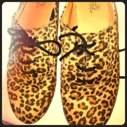 I just added this to my closet on Poshmark: Cheetah print oxfords. (http://bit.ly/ZCJPq7) #poshmark #fashion #shopping #shopmycloset