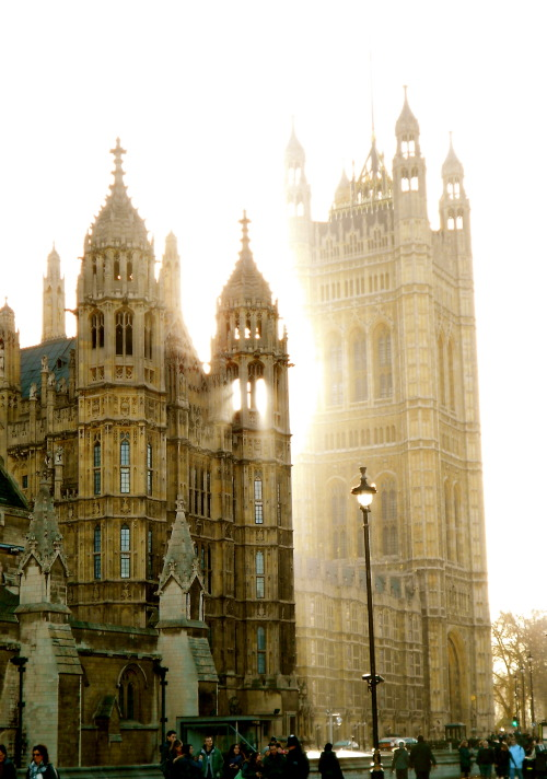 enchantedengland:  find-me-traveling-everywhere:Outside Parliament, London, England enchantedengland: Isn't this stupendous? The 'pale, watery, mystical gold of the English light' shining over London. I can't remember who wrote that; but I liked it very much. Please do not unfollow me for posting too much I am leaving now I promise.  This is so sublime.
