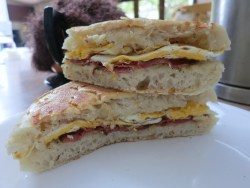 Egg and Bacon Panini