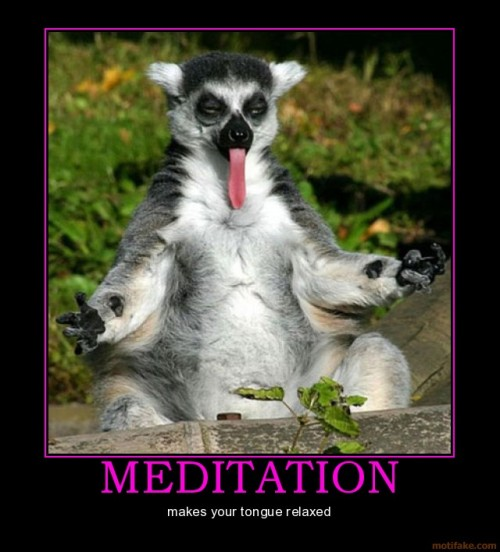 funphotololz:  Meditate at Your Own Risk