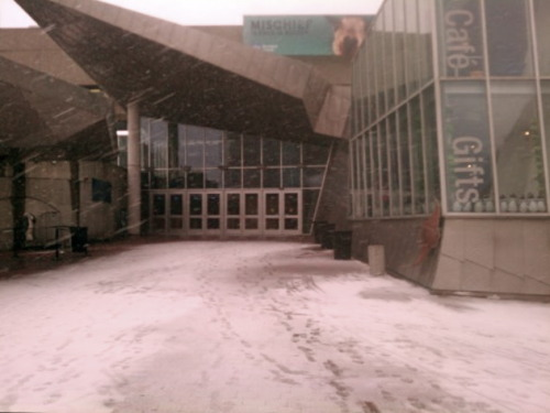 neaq:  The first of many flakes on Central Wharf. The Aquarium is now closed, and we'll remain closed tomorrow because of the storm. But the animals are safe and cozy inside. You'll be able to visit them again in no time, and be able to take save with special construction pricing!  Love the harbor in the snow… hope Larry & co. are staying warm!