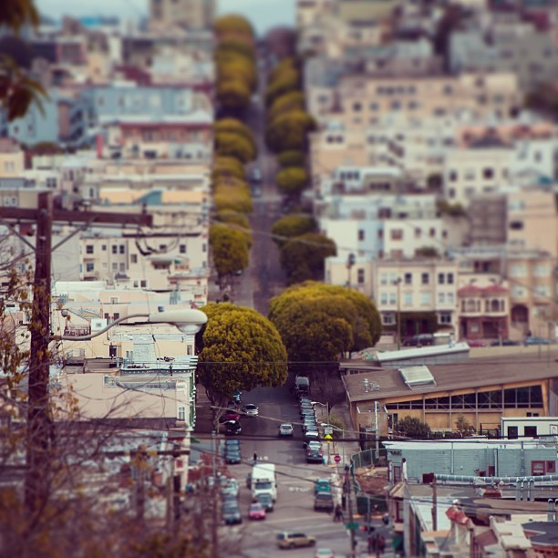 ryansebastyan:  San Francisco | 2012 #tiltshift #iphoneonly