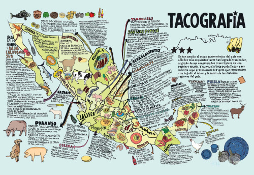 francojtorres:  Tacography (by strangemap) I love this. It's a map of the many varieties of taco found in different parts of Mexico. Being a native of Northeastern Mexico myself, I looked around for my favorite variety, the mighty sincronisada–in my opinion, the greatest invention ever by human kind next to the internet and the Hubble Space Telescope. I couldn't find it, but that just means there's too many varieties to fit in this map. I would love to be able to try all of them. Maybe one day on a taco-tour of Mexico.